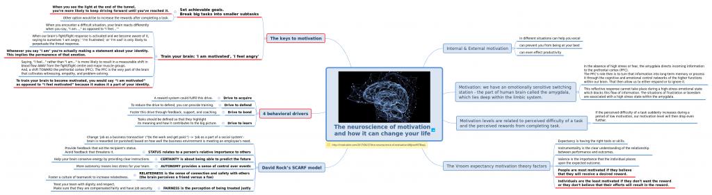 Мотивация с точки зрения работы мозга Личная эффективность