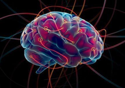 Как учиться быстрее: 6 хаков для мозга