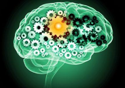Когнитивные искажения: трюки разума и как преодолевать их в работе